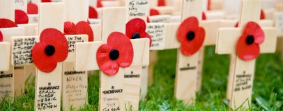 remembrance-crosses